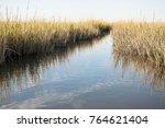 marsh waterway moving through... | Shutterstock . vector #764621404