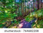 hiking along the pacific crest... | Shutterstock . vector #764682208