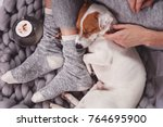 cozy  lazy day at home  cold... | Shutterstock . vector #764695900