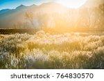 autumn background  grand teton... | Shutterstock . vector #764830570