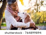 an elderly woman with dog in... | Shutterstock . vector #764899894