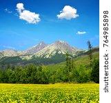 summer mountain landscape.... | Shutterstock . vector #764985898