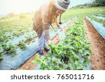 asian women relax in the... | Shutterstock . vector #765011716