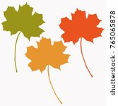 autumn leaf isolated vector | Shutterstock .eps vector #765065878