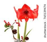 amarillis red flowers in vase ...   Shutterstock . vector #765139474