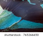 wings of butterflies at high... | Shutterstock . vector #765266650