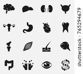 set of internal organs  icons. | Shutterstock . vector #765294679