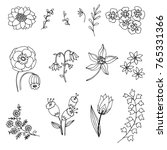set of hand drawn linear flowers | Shutterstock .eps vector #765331366