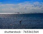 cancun hotel zone from isla... | Shutterstock . vector #765361564