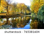 golden autumn in the park... | Shutterstock . vector #765381604