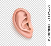vector realistic human ear icon ... | Shutterstock .eps vector #765391309