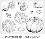 hand drawn vector set of eco... | Shutterstock .eps vector #765392734