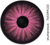Pink Eye Iris