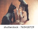 Stock photo black cat and champagne vintage grained background good luck concept 765418729