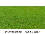 green grass isolated on white... | Shutterstock . vector #765561064