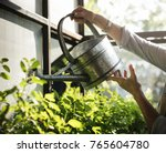 Hands Watering Plants With A...