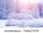 winter wonderland scene... | Shutterstock . vector #765627370