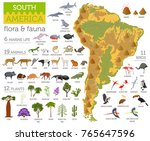 south america flora and fauna... | Shutterstock .eps vector #765647596