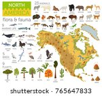 north america flora and fauna... | Shutterstock .eps vector #765647833