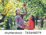 happy little children picking... | Shutterstock . vector #765648079