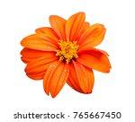 Fresh Orange Flower Isolated O...