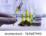 testing cannabis buds for the...   Shutterstock . vector #765687940