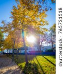 colorful autumn sunrise in... | Shutterstock . vector #765731518