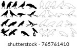 Silhouette Of Crows Set
