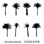 black and white silhouette... | Shutterstock .eps vector #765811498