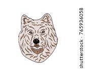 husky vector drawing... | Shutterstock .eps vector #765936058