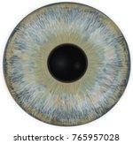 eye iris    realistic vector    ...   Shutterstock .eps vector #765957028