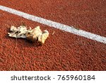leaves on the ground | Shutterstock . vector #765960184
