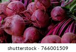 Fresh Beets And Beet Tops  Lie...