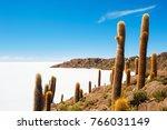 big cactus on incahuasi island  ... | Shutterstock . vector #766031149