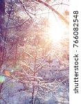 winter wonderland scene... | Shutterstock . vector #766082548