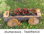 flowerbed in a trunk of the tree | Shutterstock . vector #766096414