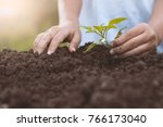 child hand planting young tree... | Shutterstock . vector #766173040