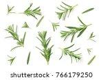 rosemary isolated on white...   Shutterstock . vector #766179250