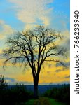 one bare tree silhoutte against ... | Shutterstock . vector #766233940