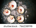 Small photo of Raw queen scallops (lat. Aequipecten opercularis) on ice