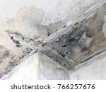 ceiling panels and wall damaged ... | Shutterstock . vector #766257676
