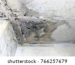ceiling panels and wall damaged ... | Shutterstock . vector #766257679