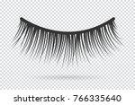feminine lashes vector. false... | Shutterstock .eps vector #766335640