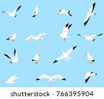 set of beautiful seagulls in a... | Shutterstock . vector #766395904