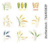 cereal plants  icons... | Shutterstock . vector #766403839