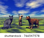 Katzen Spielen Auf Wiese 3d...