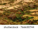 a view of isla de la plata ... | Shutterstock . vector #766630744