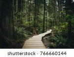 Stock photo lynn valley park north vancouver canada 766660144