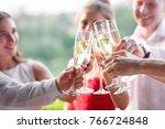 friends having a toast | Shutterstock . vector #766724848