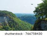 eagle flying at letchworth... | Shutterstock . vector #766758430